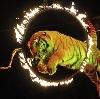 Цирки в Копейске